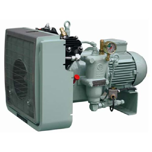 Picture Of Sauer reciprocating Compressor